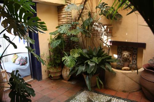 Interior Patio